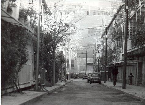 hortaleza-80